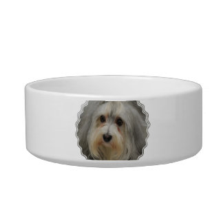 Havanese Pet Bowl