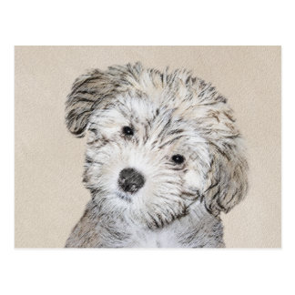 Havanese Puppy Painting - Cute Original Dog Art Postcard