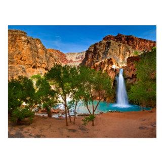 Havasu Falls of The Grand Canyon Postcard
