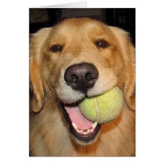 Have a Ball! Card