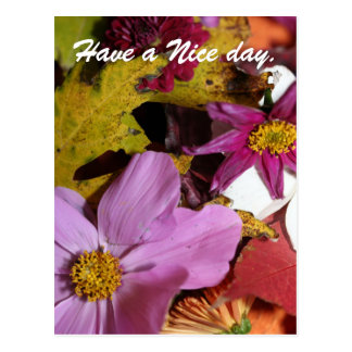 Have a Nice day. Postcard