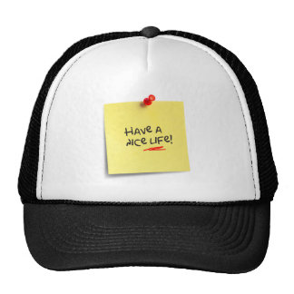 Have a nice live! mesh hat