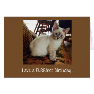 Have a Purrfect Birthday Greeting Card