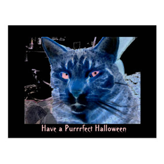 Have a Purrrfect Halloween Postcard