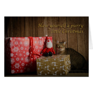 Have yourself a purry little Christmas Card