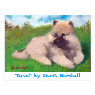 Havel by Frank Marshall Postcard