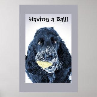 Having a Ball! Poster