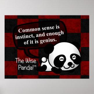 Having common sense makes you a genius poster