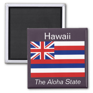 Hawaii Flag Magnet