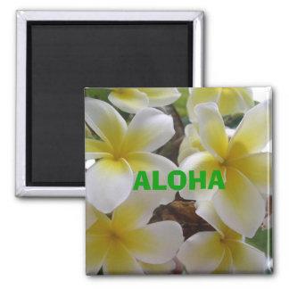 hawaii flowers1, ALOHA Magnet