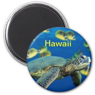 Hawaii fridge magnet