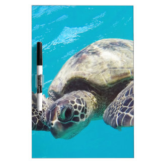 Hawaii Green Sea Turtle Dry Erase Board