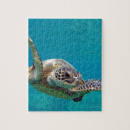 Hawaii Green Sea Turtle - Honu Jigsaw Puzzle