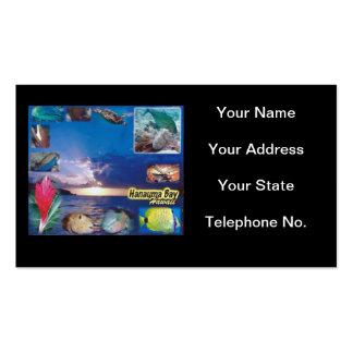 Hawaii Hanauma Bay Nature Preserve Pack Of Standard Business Cards