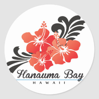 Hawaii Hibiscus Flowers Classic Round Sticker