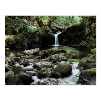 Hawaii, Maui, A waterfall flows into Blue Pool Postcard