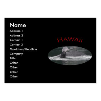 Hawaii Pack Of Chubby Business Cards