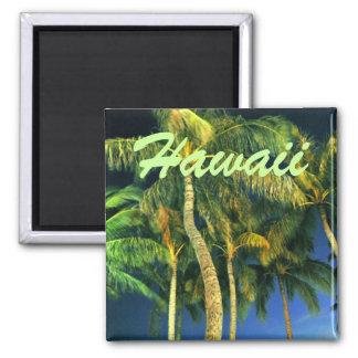 Hawaii Palm Tree Magnet