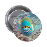 Hawaii Parrot Fish Buttons