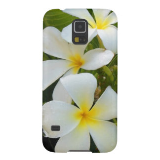 Hawaii Plumeria Case For Galaxy S5