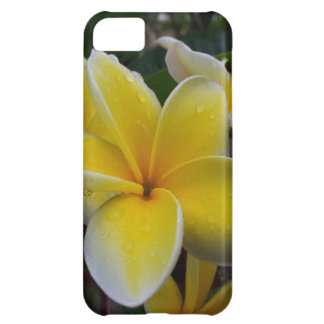 Hawaii Plumeria Flowers iPhone 5C Case
