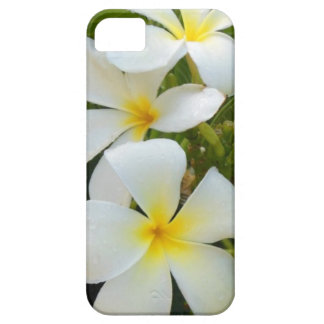 Hawaii Plumeria iPhone 5 Cover