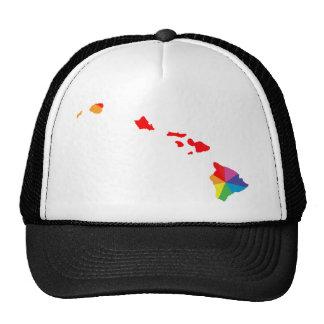 hawaii pride. angled. cap