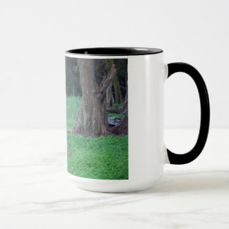 HAWAII  RAINFOREST MUG /MAUI