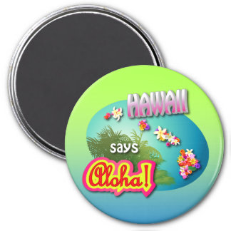 Hawaii Says Aloha! Magnet