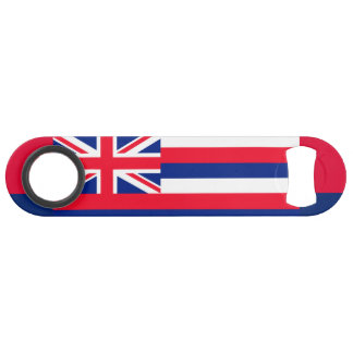 Hawaii State Flag Design
