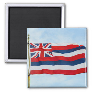 Hawaii State Flag Magnet