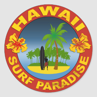 Hawaii surfing design sticker