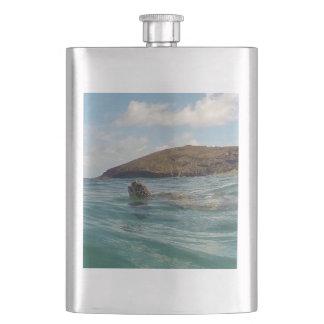 Hawaii Turtle Flasks