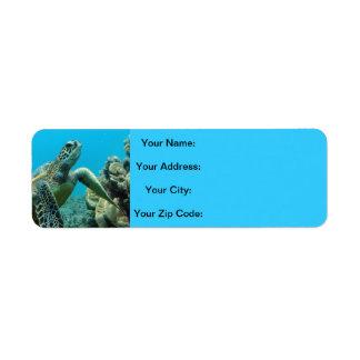 Hawaii Turtles Return Address Label