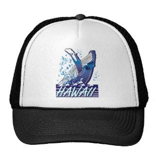 Hawaii-Whale Hat