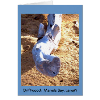 Hawaiian Beach Driftwood Blank Card