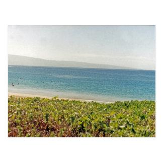 Hawaiian Beach I Postcard