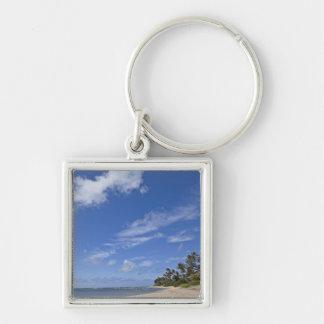 Hawaiian beach with palm trees. key chain