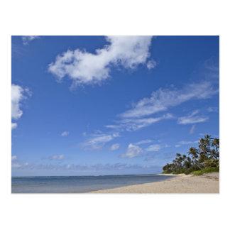 Hawaiian beach with palm trees. postcard