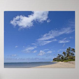 Hawaiian beach with palm trees. poster