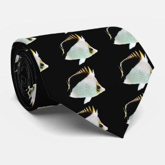 Hawaiian butterflyfish and Chaetodon tinkeri Tie