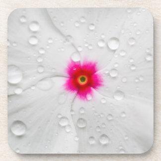 Hawaiian Flower Hard Plastic Coasters (set of 6)