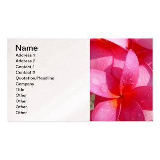 Hawaiian Frangipani Pack Of Standard Business Cards