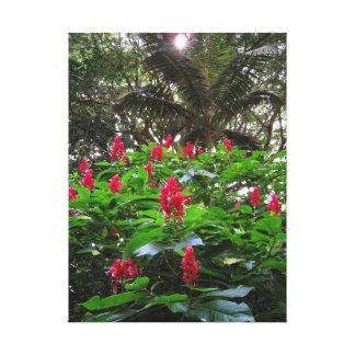 Hawaiian Garden Stretched Canvas Prints