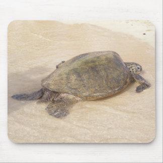 Hawaiian Giant Sea Turtle Mouse Pad
