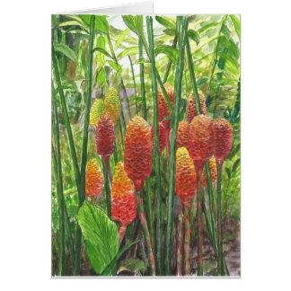 Hawaiian Ginger Plants Card