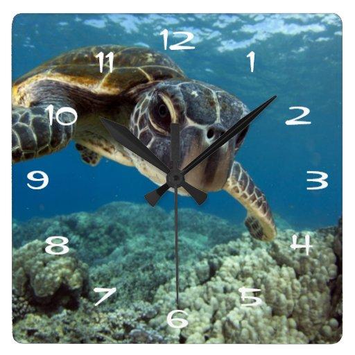 Hawaiian Green Sea Turtle Square Wallclock