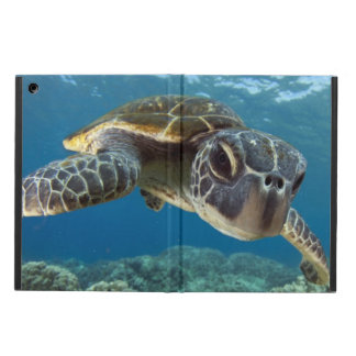 Hawaiian Green Sea Turtle iPad Air Covers