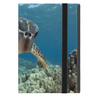 Hawaiian Green Sea Turtle iPad Mini Cases