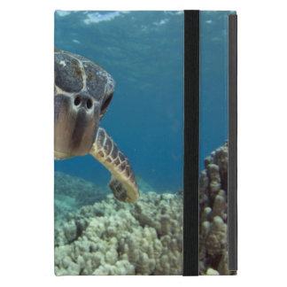 Hawaiian Green Sea Turtle iPad Mini Cases